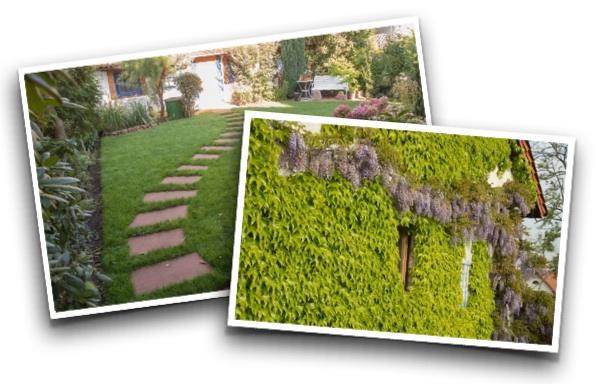 Garten-Gestaltung