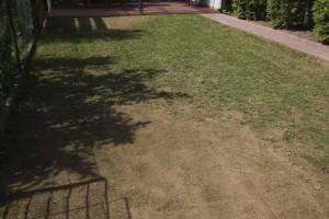 Rasensanierung Rasen Erneuern Ohne Umbruch Deingruen De